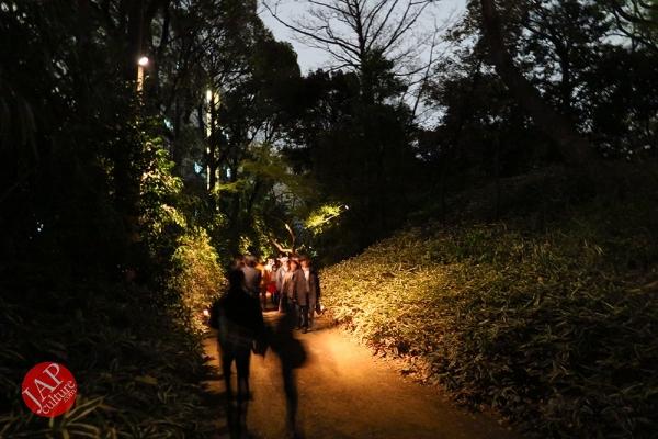 Weeping cherry tree (Shidarezakura) in Rikugien illumination attracts many people.0029