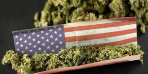 o-MARIJUANA-USA-facebook