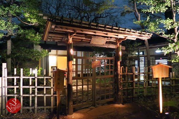Weeping cherry tree (Shidarezakura) in Rikugien illumination attracts many people.0014