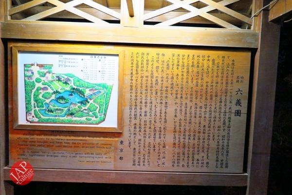 Weeping cherry tree (Shidarezakura) in Rikugien illumination attracts many people.0027