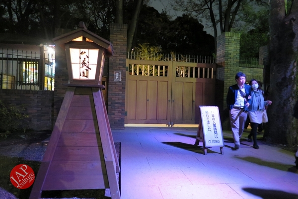 Weeping cherry tree (Shidarezakura) in Rikugien illumination attracts many people.0039